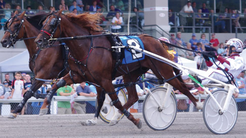 Horse racing betting vouchers for restaurants world sports betting mobile